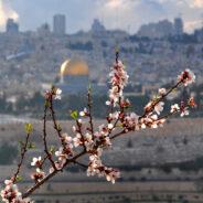 Springtime in Jerusalem